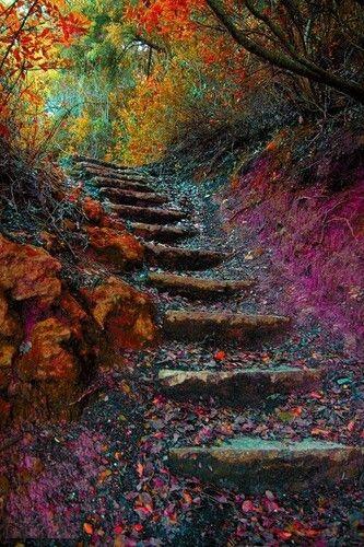 Autmn stairs